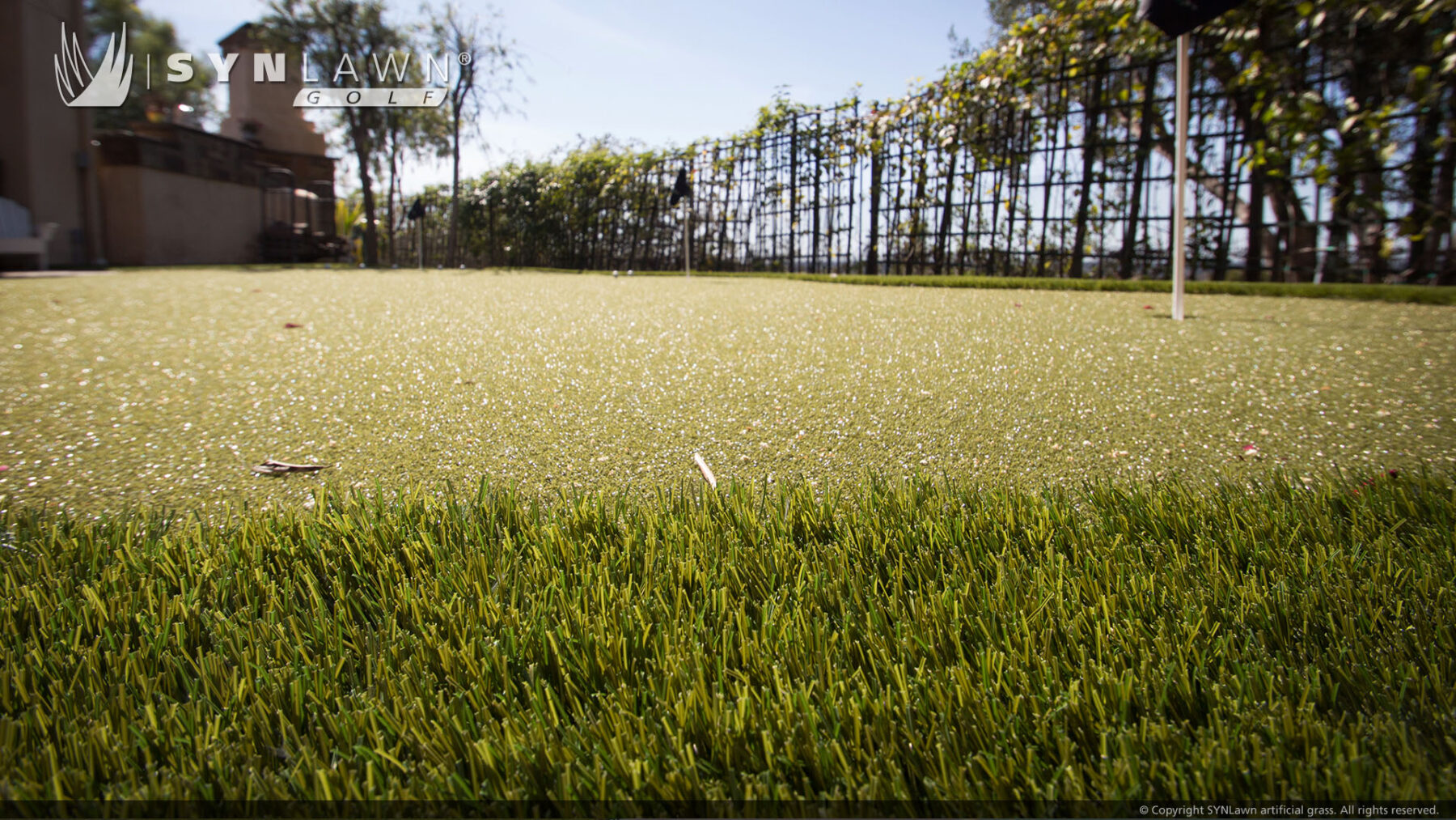 affordable putting grass