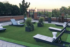 new york artificial lawn
