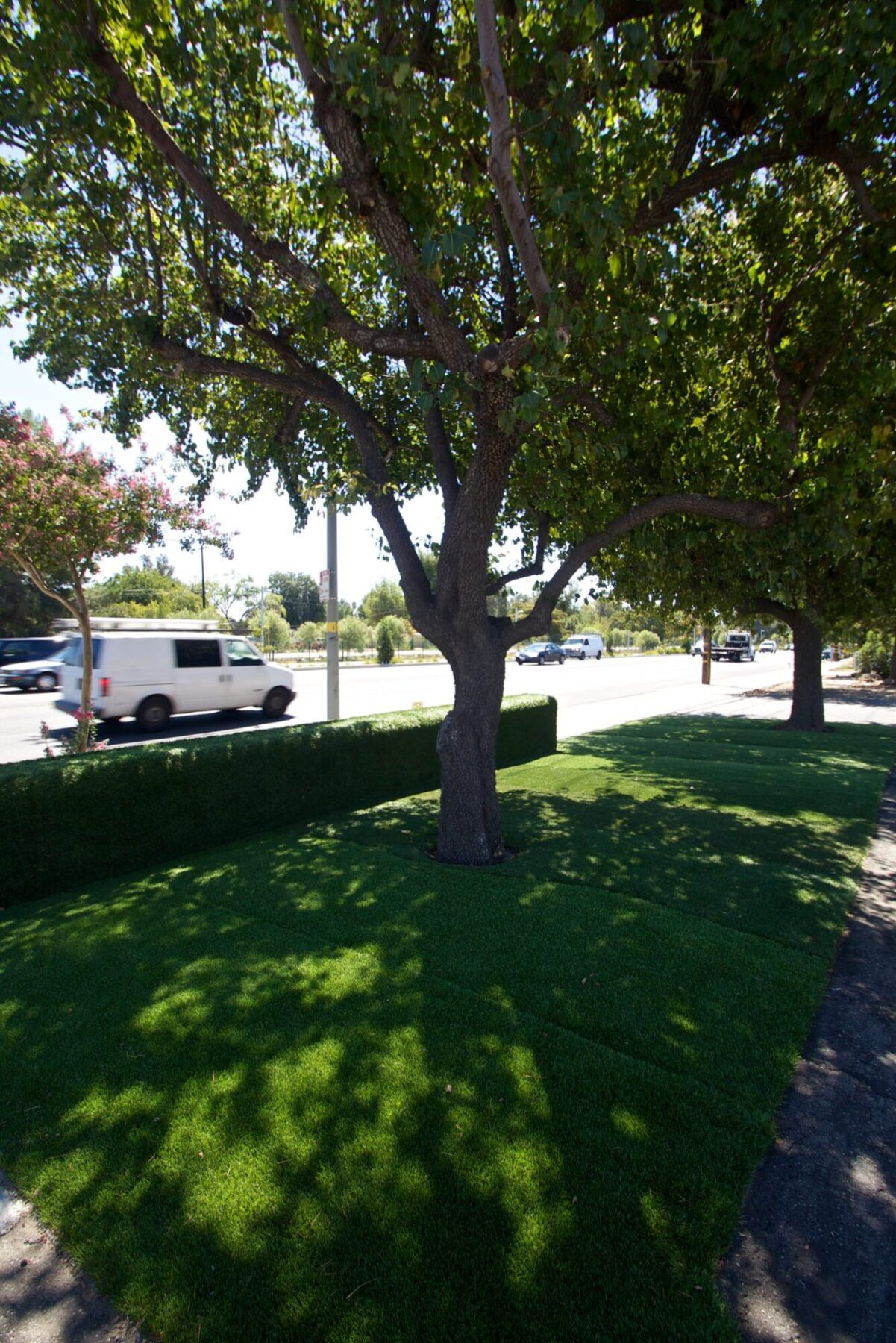 SYNLawn LA Showroom Canoga Park California