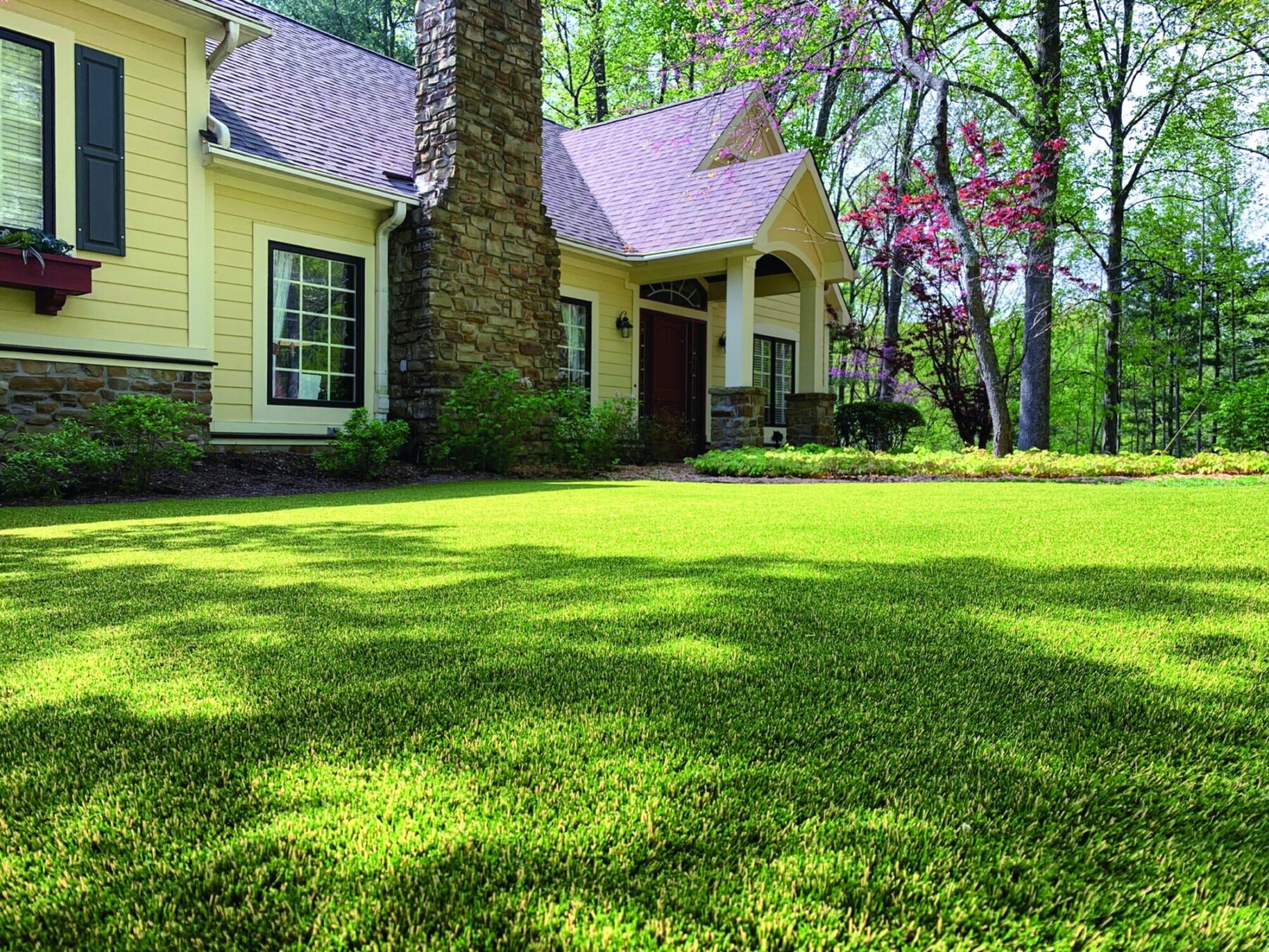 affordable new york lawn, artificial grass