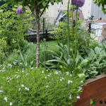 5 Ways to Step Up Your Staten Island Home's Landscaping