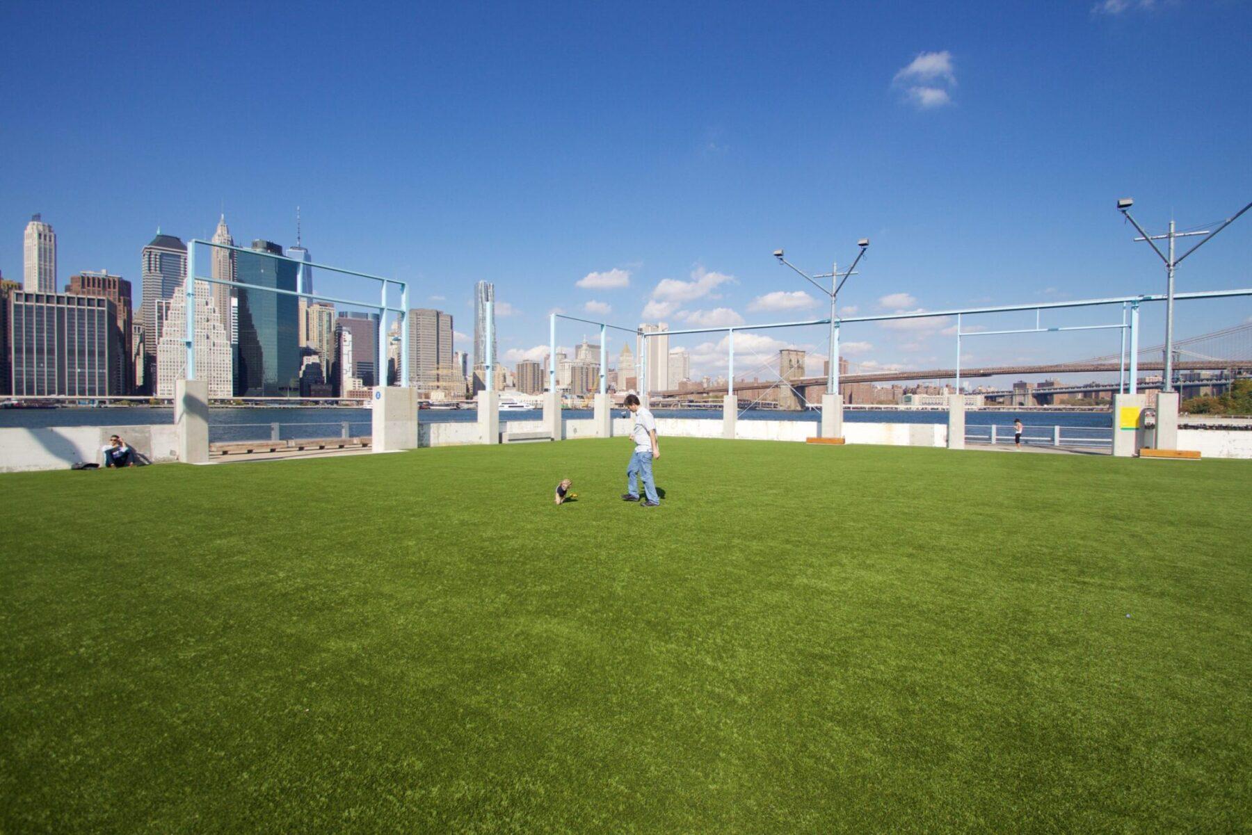 Roof top artificial grass