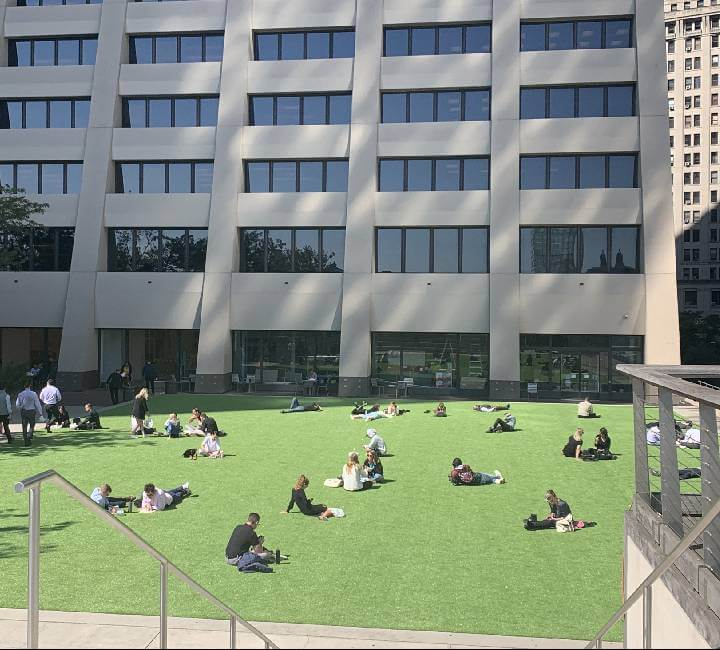 commercial artificial lawn in New York